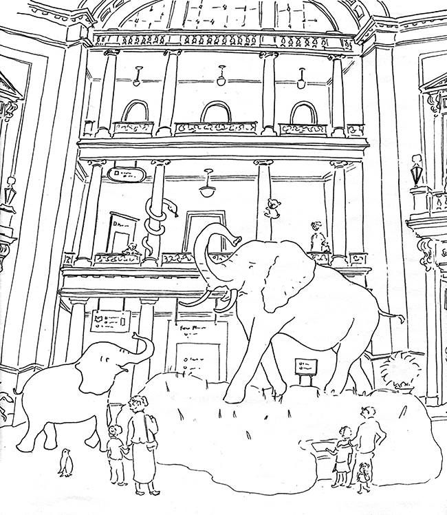 Supreme Court Washington Coloring Page At The Museum Coloring Pages